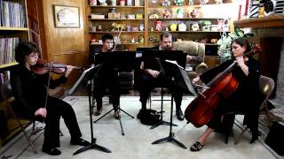 Caribbean Blue by Enya by Musical Discovery Chamber Players