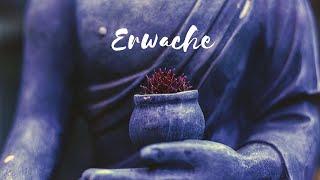 SEOM - ERWACHE (Offizielles Video)