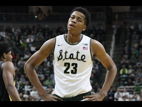 Deyonta Davis 2016-2017 NBA Season Highlights