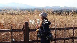 [Travel Video 여행영상] Jeju Island 제주도 | 여자 혼자 여행 | Luma Fusion