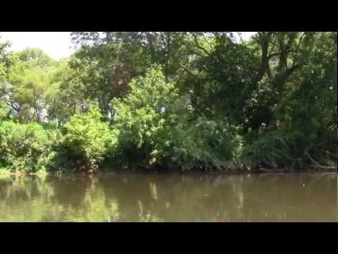 Brandywine Creek, Rt. 926 bridge to Rt. 1 bridge, Chadds Ford, PA, USA Part 01