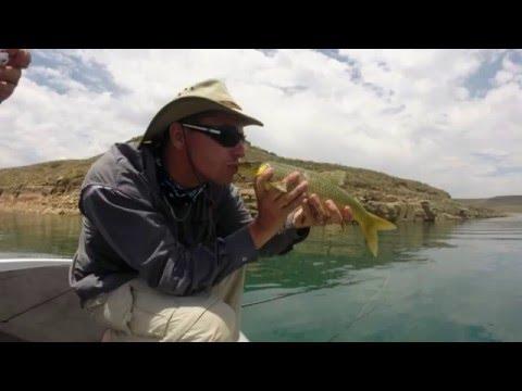 Sterkfontein Dam (Adventure Land) 2015
