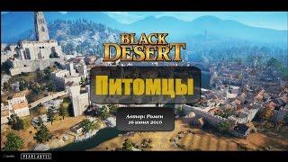 Питомцы в Black Desert
