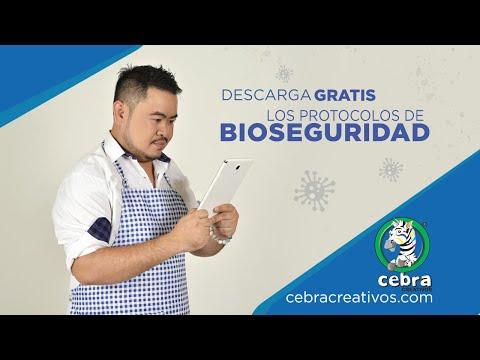Descarga Gratis Protocolos De Bioseguridad / Sanandresito Centro