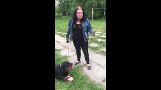Пьяна женщина гуляет с ротвейлером без намордника