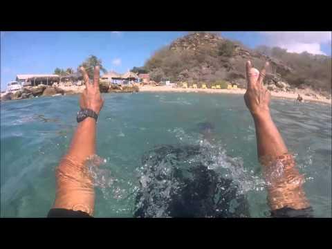 Island Tour & Snorkel trip Curacao