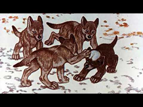 Белолобый чехов смотреть мультфильм онлайн