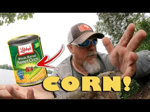How To Catch Carp With Corn