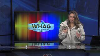 WHAG Anchor Taniya Wright Accepts the 2015 Polar Bear Plunge