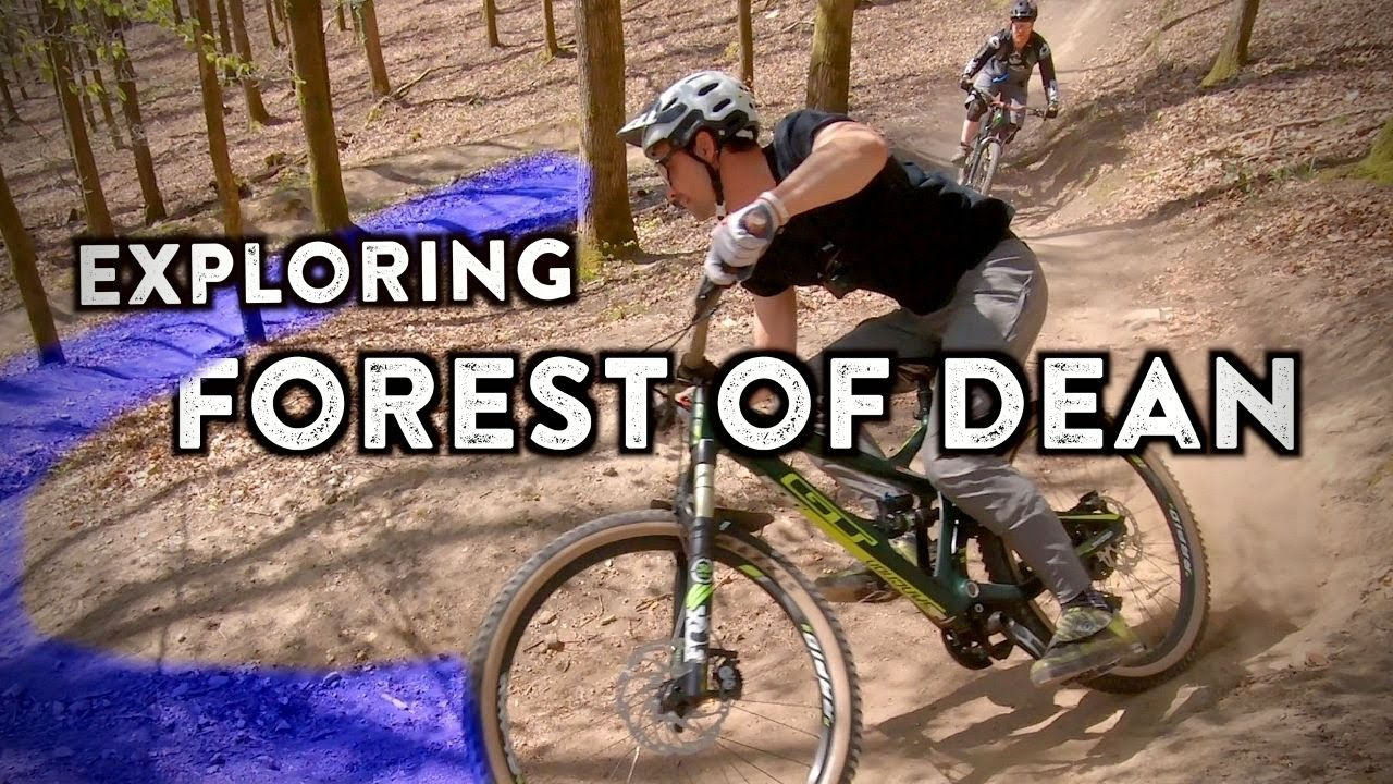 An Inside Look At The Forest of Dean Mtb Trails | DH Tracks and Freeminers XC Loop