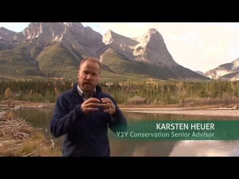 Yellowstone to Yukon: 20 Years of Progress