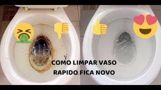 DIY  como limpar VASO SANITÁRIO ENCARDIDO E COM CROSTA