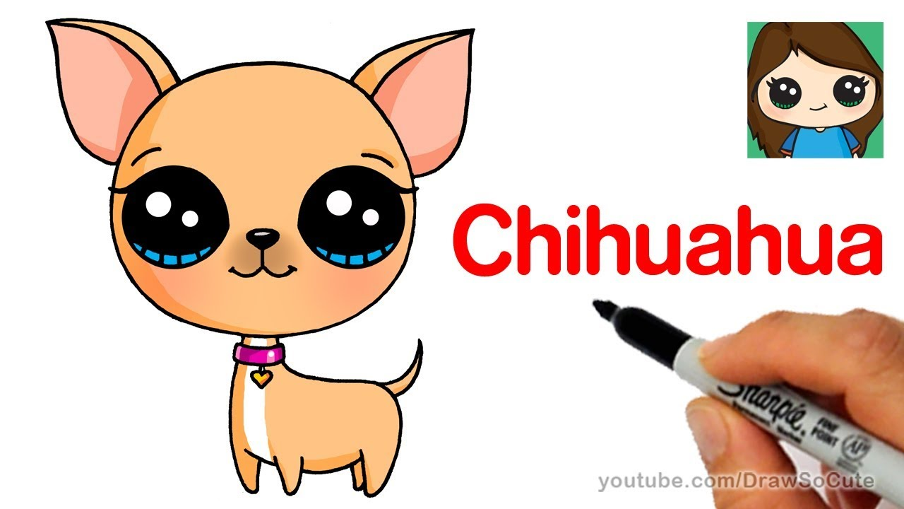 How To Draw A Chihuahua Easy Youtube