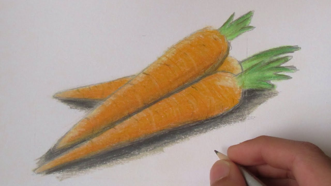 Realistic Carrots Speed Drawing YouTube
