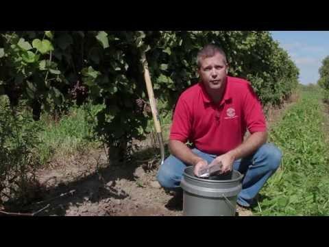 Soil Testing in the Vineyard