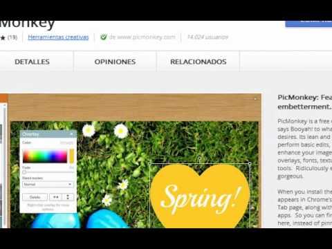 descargar picmonkey editor de fotos gratis en espanol para pc