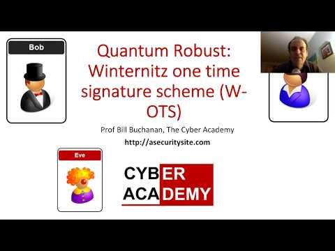 Quantum Robust: Winternitz one time signature scheme (W-OTS)