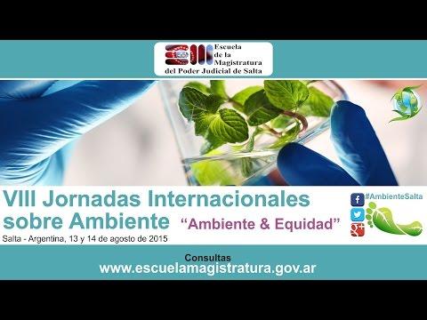 01 - VIII Jornadas Internacionales sobre Ambiente - 2015