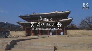 롱 라이프 서울 (LONG LIFE SEOUL)