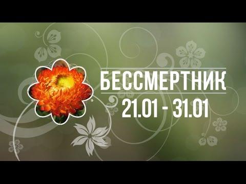 гороскоп на завтра цветочный