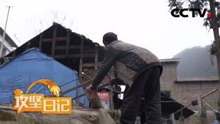 《攻坚日记》 20200408 格凸河的见证(2)|CCTV农业