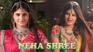 Bhojpuri Film Dilwale Team Celebrates Neha Shree's Birthday On Set| Spicy Bhojpuri