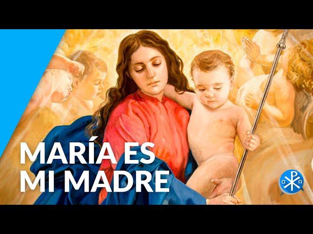 María es mi Madre   Perseverancia - P. Gustavo Lombardo