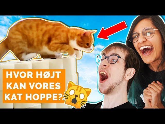 Hvor højt kan Chili hoppe?