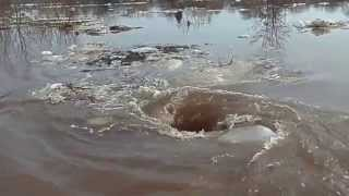 Amazing Monstrous Whirlpool / Чудовищный водоворот / Dvietes Atvars