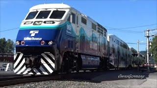 7 Sounder Train Rush Hour w/ Horn Blasting Music! Feat. F59PH & MP40PH Locomotives