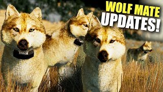 HUNTING CUBS With My Mate! Wolf Quest Pack & Mate Updates! - Wolf Quest Anniversary