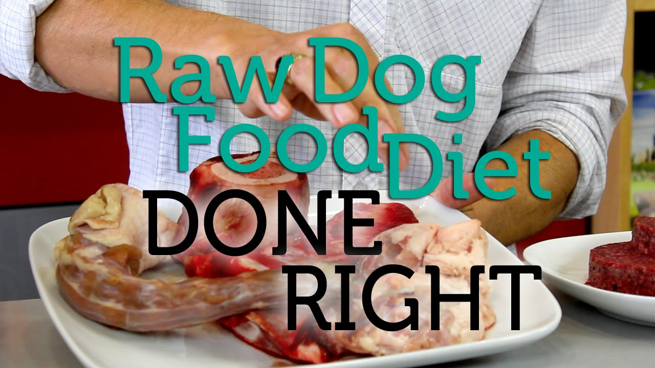 How to do the raw dog food diet right youtube how to do the raw dog food diet right forumfinder Image collections