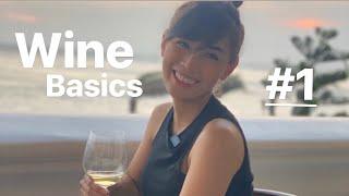 Cơ bản về rượu vang dành cho người mới bắt đầu cùng Hạnh Around