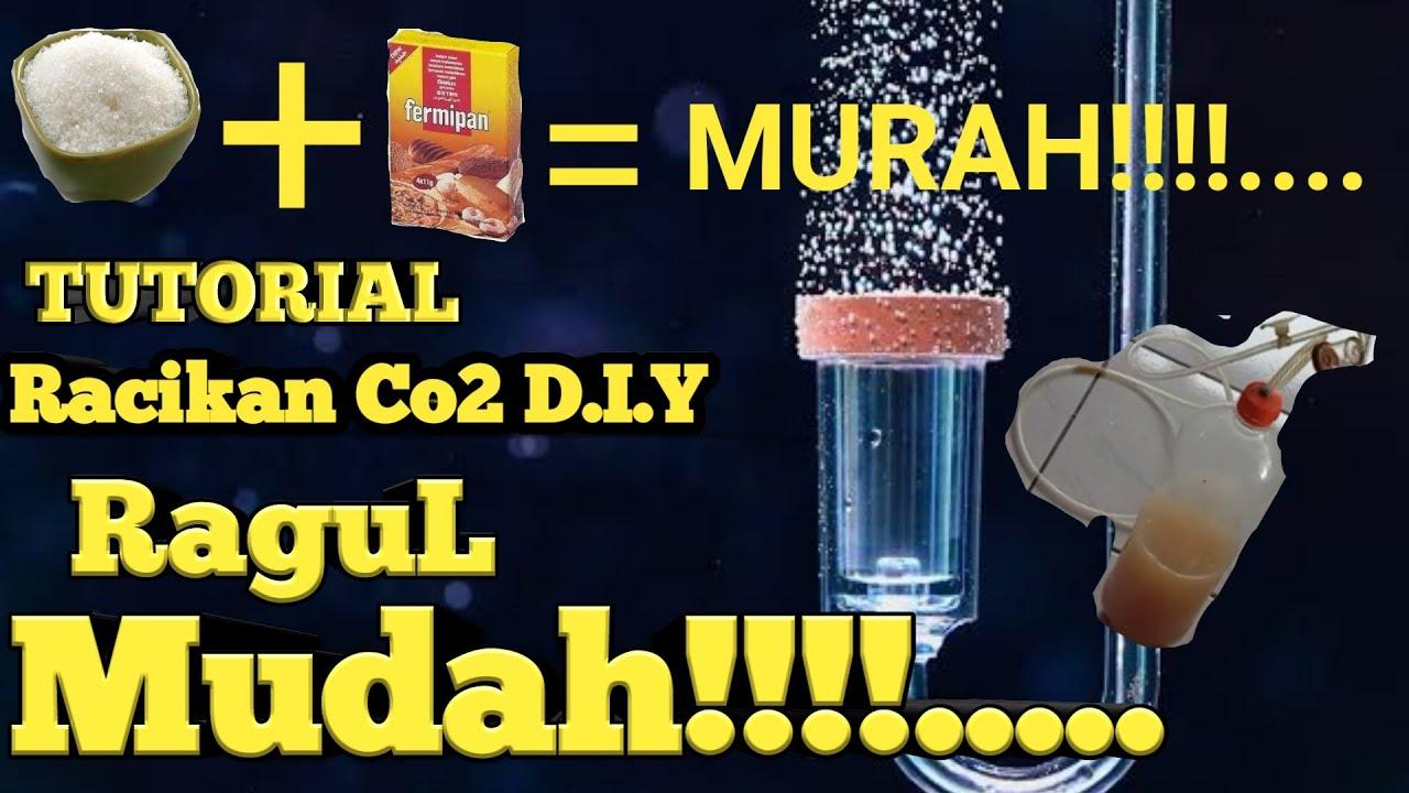 Download #TUTORIAL RACIKAN CO2 RAGUL #AQUASCAPE MUDAH DAN MURAH UNTUK PEMULA