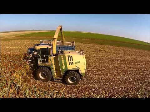 Sunrise Farms Forage Sorghum Harvest