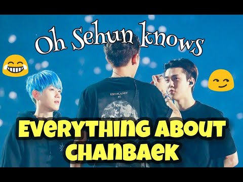 Chanbaek Moments   Oh Sehun knows everything about them