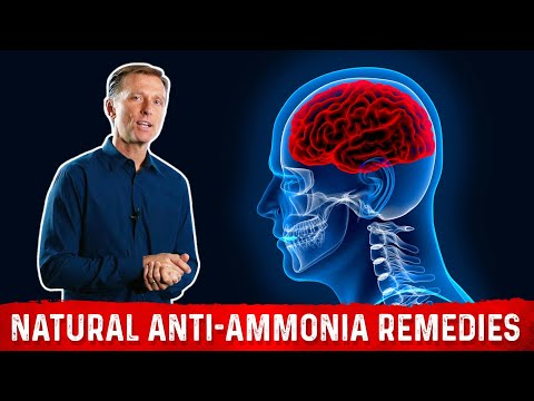 4 Ways to Lower Ammonia in the Brain