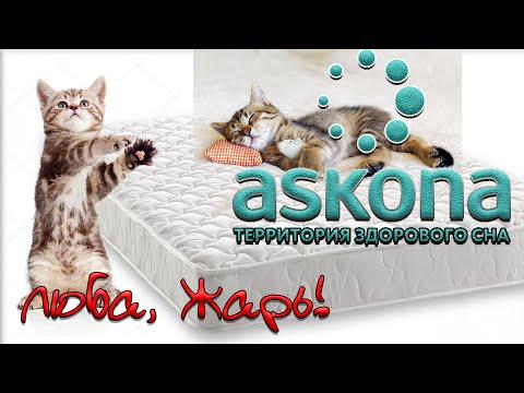 Вся правда об Askona. Молчать невозможно покупать или нет. Матрас Askona Trend Roll. Возврат