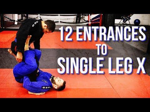 12 Entrances to Single Leg X streaming vf
