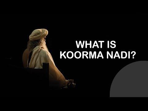 What is Koorma nadi by Sadhguru