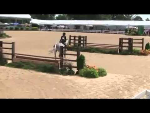 Blue Without You Large Green Pony Pony Finals 2011 6th Place