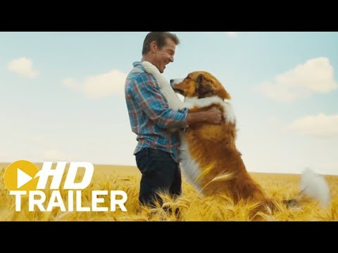 A Dog's Journey | Official Trailer #1 (2019) HD | Mixfinity International