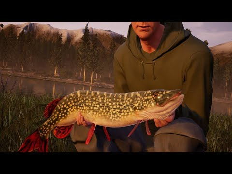 Fishing Sim World – Gameplay Trailer
