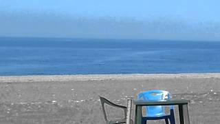 артур багарян 2015 абхазия  алахадзе дельфины