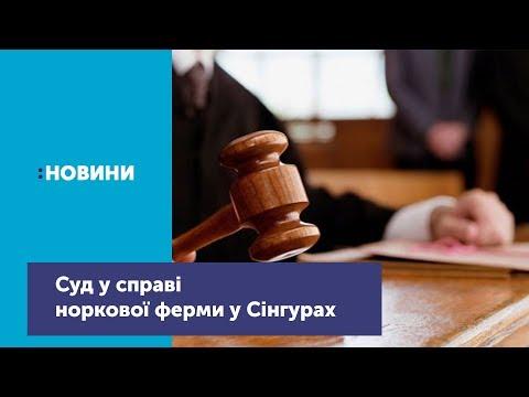 Телеканал UA: Житомир: Суд у справі норкової ферми у Сінгурах_Канал UA: ЖИТОМИР 21.06.19