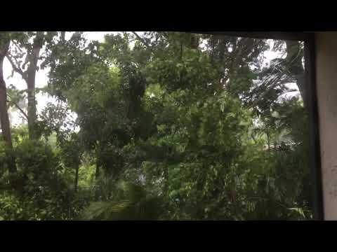 Hurricane Irma in Coral Springs, Florida