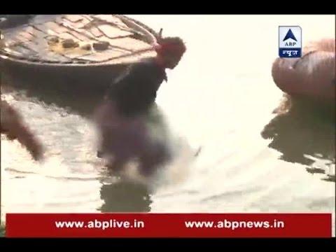 Bihar Boat Tragedy: Visuals of NDRF teams...