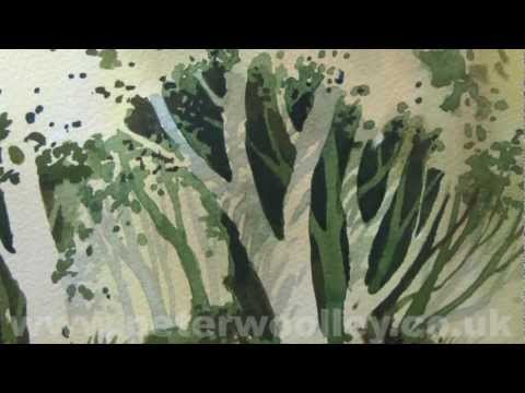Negative Painting by PETER WOOLLEY (DVD Trailer)