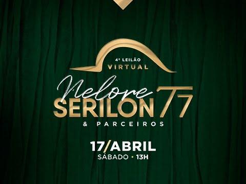 Lote 72   Lampião Serilon   SERI 220 Copy