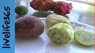 Why Eat Cactus Fruit (Prickly Pear)?
